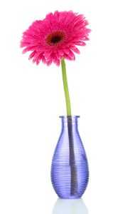 Pink gerbera in purple vase - The Content Alchemist - small business website audit