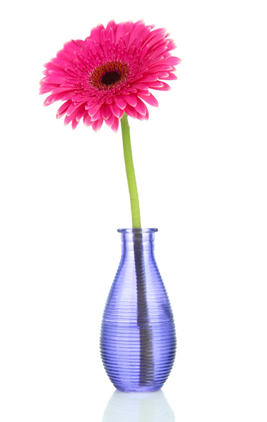Pink gerbera in purple vase - The Content Alchemist - small business website audit
