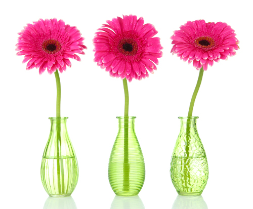 Three pink gerbea flowers in vases - The Content Alchemist – content writer for small businesses